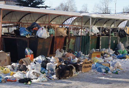 Жители одной из окраин Биробиджана рискуют зарасти мусором в Новый год