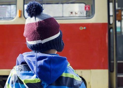Кондуктор автобуса в Биробиджане высадила ребенка на мороз, СК начал проверку