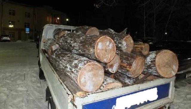 «Черных лесорубов» поймали в Биробиджане