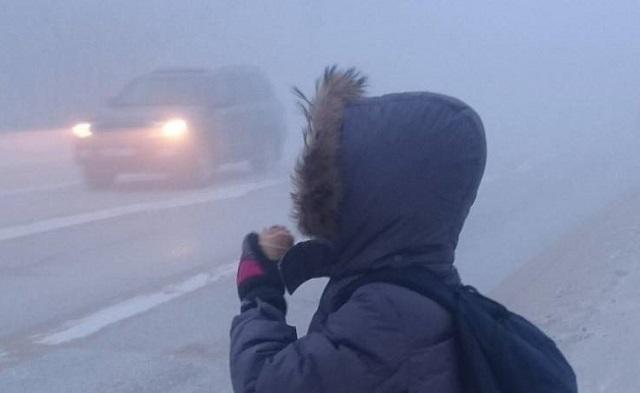Безбилетников могут запретить высаживать на мороз