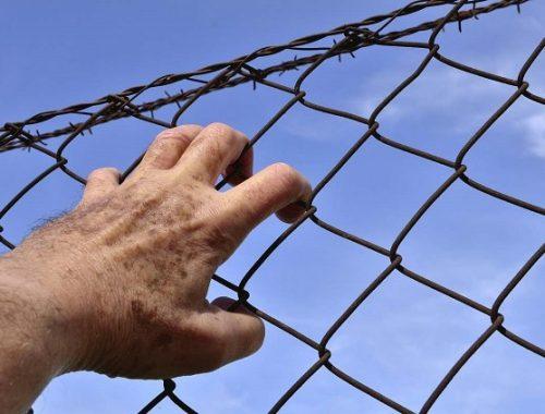 Осужденный сбежал из колонии-поселения в ЕАО, ведется розыск