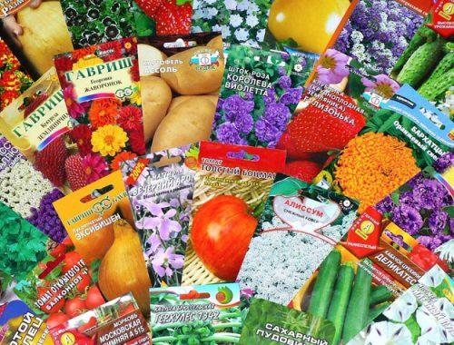 Сезон начался: сомнительными семенами торгуют в ЕАО