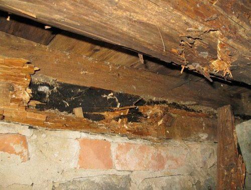 Два года семья из ЕАО проживает в сгнившем доме