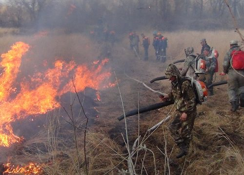 Около 3500 человек готовы к борьбе с огнем в ЕАО