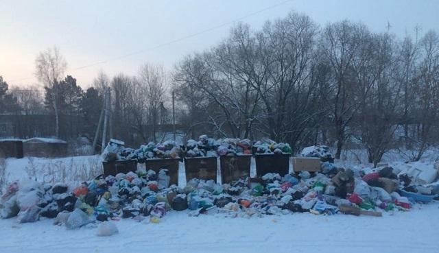 За помощью в устранении свалки жителям Приамурской пришлось обратиться к активистам ОНФ