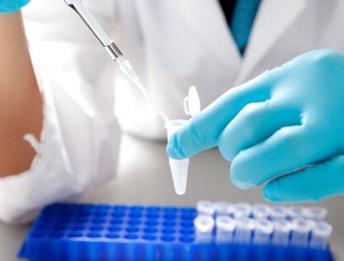 Результаты анализов пациентов из Амурзета еще не пришли — правительство ЕАО