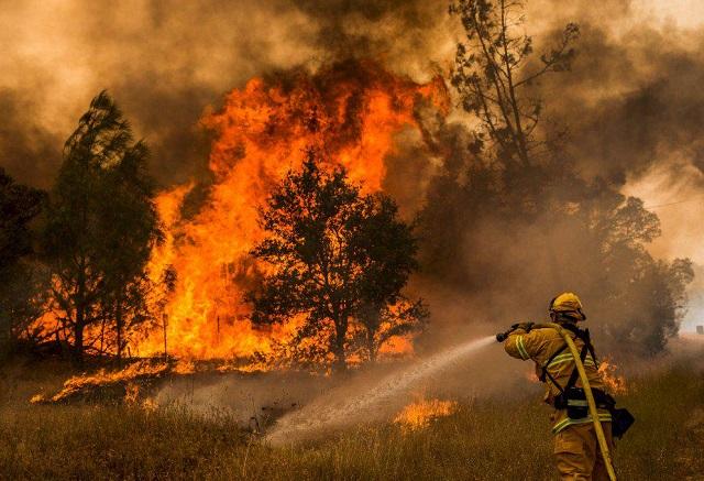 Пожарный погиб при тушении возгорания в заповеднике «Бастак»