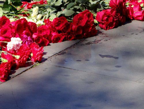 День памяти и скорби: 77-я годовщина начала Великой Отечественной войны