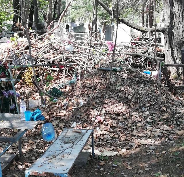 Завалы мусора, гробы из под земли: результаты проверки кладбища в Биробиджане