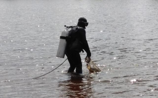 Водолазы обследовали дно двух разрешенных для купания водоемов