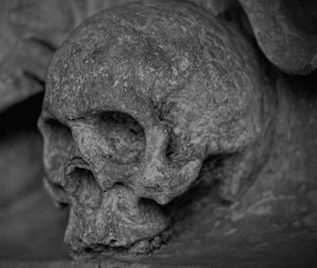 Человеческую голову обнаружили в подвале дома в Биробиджане
