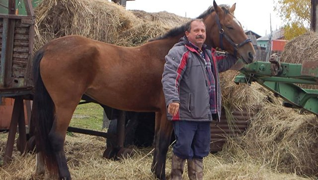На Камчатке депутат пересел на коня из-за роста цен на бензин