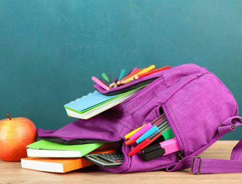 Какие изменения ждут школы ЕАО после открытия
