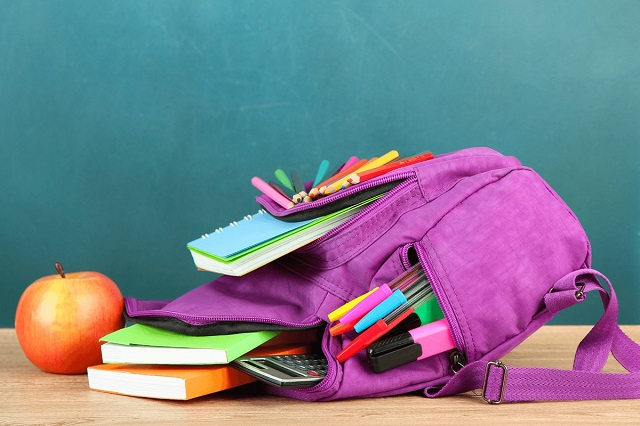 Школы ЕАО перейдут на дистанционное обучение после каникул