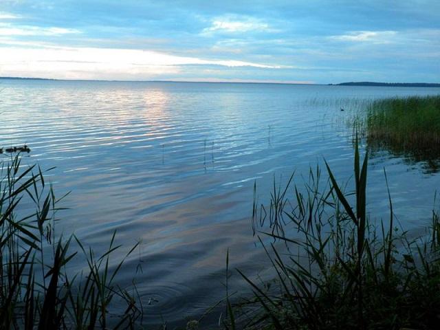 Воспитанник детдома утонул в водоеме в ЕАО