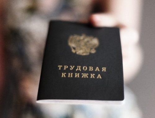 В России ускорят введение электронных трудовых книжек