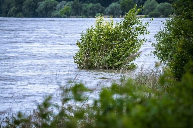 «Сухой закон» хотят ввести в Ленинском районе ЕАО из-за паводка
