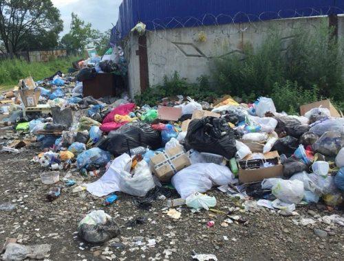 Жители Еврейской автономии больше всех жалуются на мусорную реформу