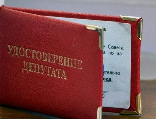 Депутат из Приамурья заработал за год три копейки