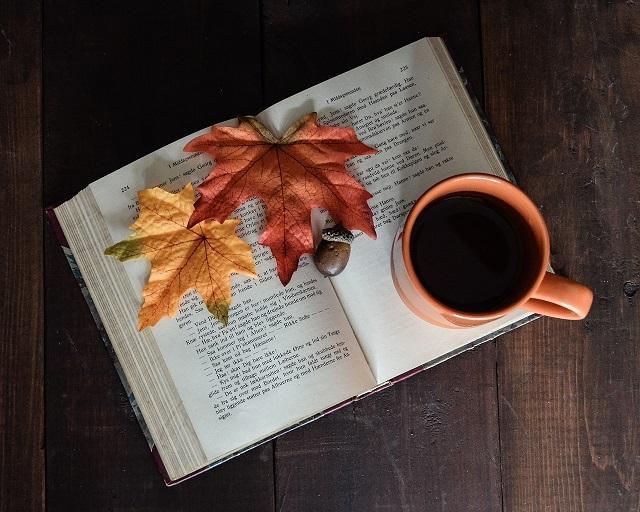 Литературная гостиная: что почитать в выходной день?