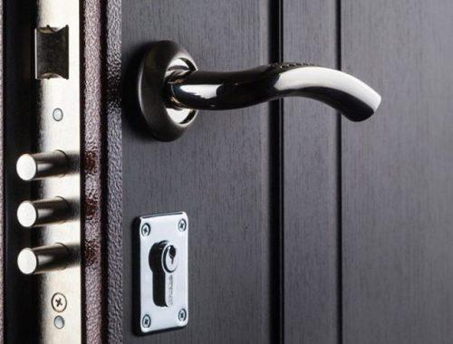 Не закрытая входная дверь приманила незваную гостью