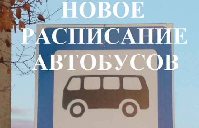Регулярные межмуниципальные маршруты до Кирги и Птичника начнут работу в ЕАО