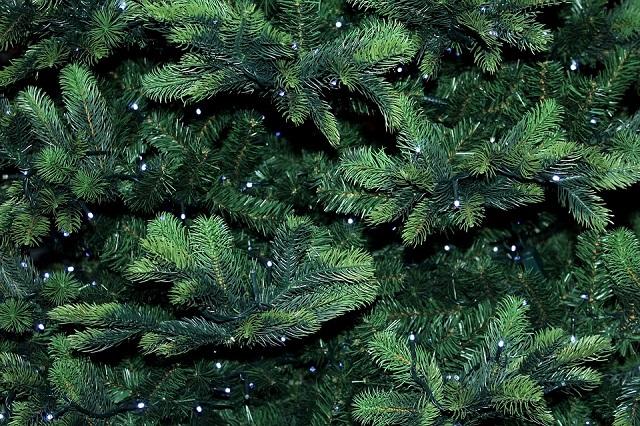 Названо число хранящих новогоднюю елку до лета россиян