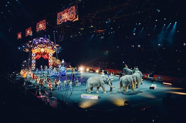 В России предложили запретить детям посещать цирк