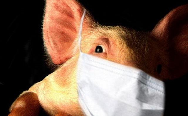 Одиннадцать детей заразились свиным гриппом в ЕАО