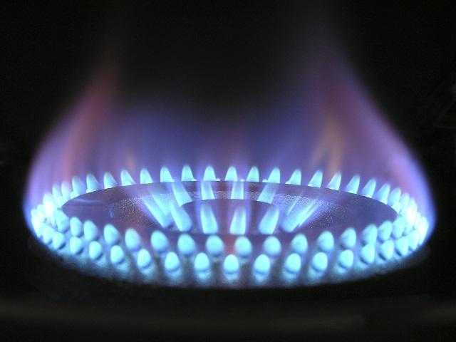 В ЕАО поддержали закон о системе контроля утечки газа