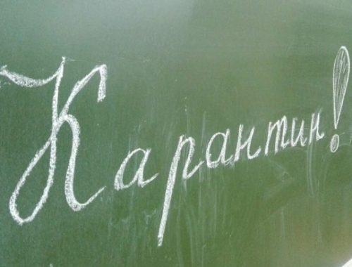 Школу № 5 и 30 классов закрыли на карантин в Биробиджане