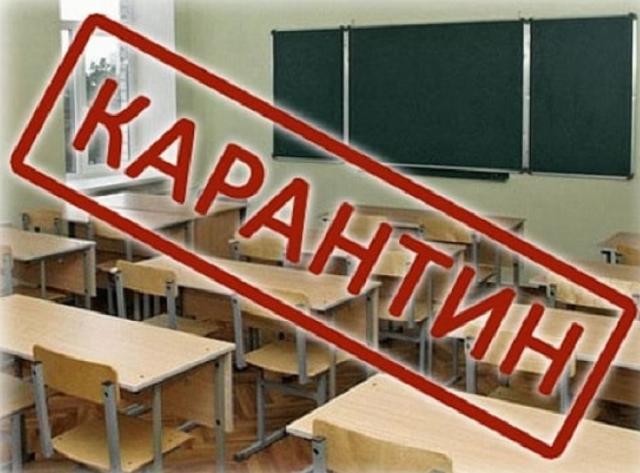 Три школьных класса закрыли на карантин в Биробиджане