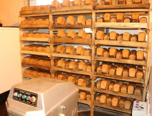 Более восьмисот булок хлеба в день производят в колониях ЕАО