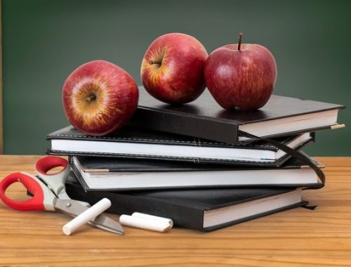 В Минпросвещения ответили на предложение перенести начало учебного года