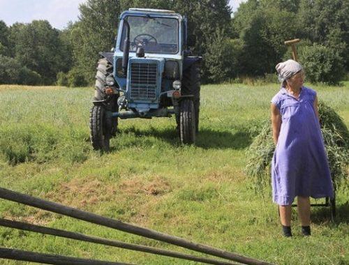 Жительницы сел должны больше работать, считает Минтруд