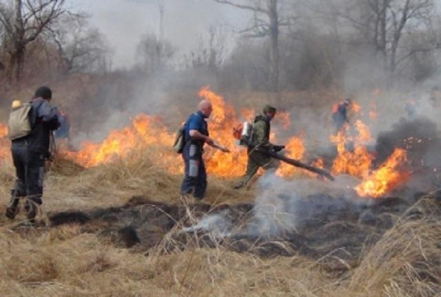 За выходные пожарные ЕАО выезжали 50 раз на тушение сухой травы