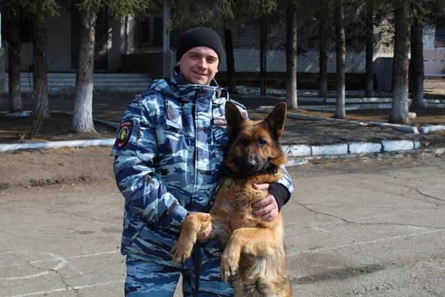 Служебная собака Гая помогла найти похищенную детскую кроватку