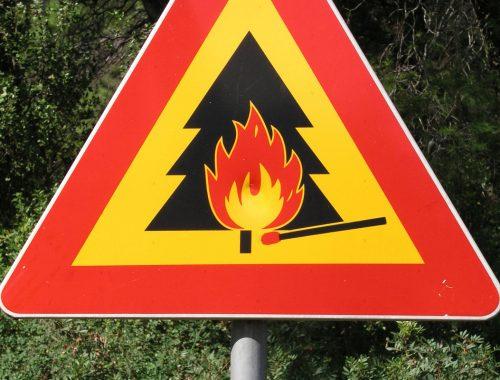 В ЕАО отменен особый противопожарный режим