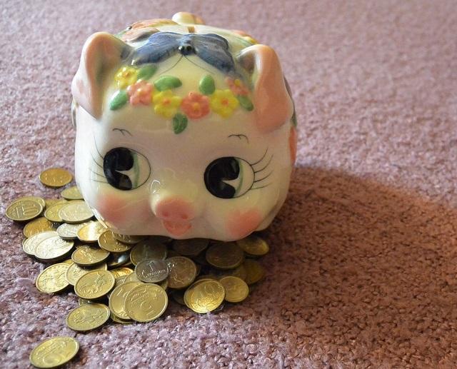 Чиновники ЕАО получают самую маленькую зарплату на Дальнем Востоке