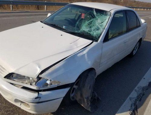 На трассе в ЕАО пьяный водитель сбил пешехода насмерть