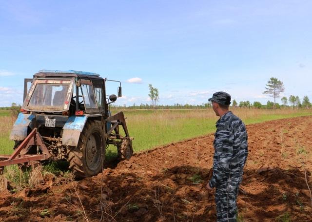 В колониях ЕАО намерены вырастить более 90 тонн овощей