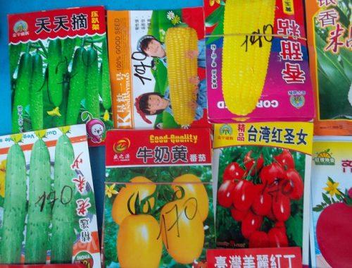 Подозрительными семенами торгуют на центральном рынке в Биробиджане