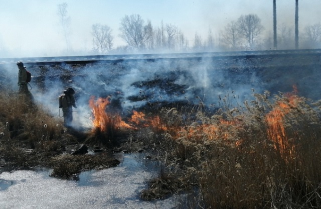 Особый противопожарный режим введен в Смидовичском районе ЕАО