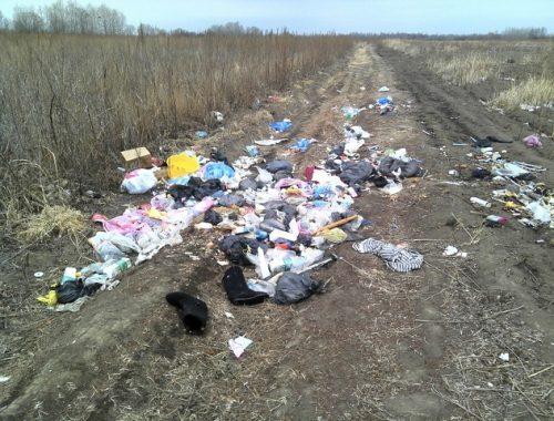 Сельскохозяйственный участок в ЕАО превратили в свалку