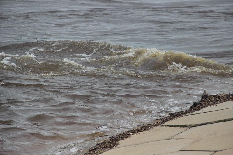 Гребень паводка на подходе к Биробиджану