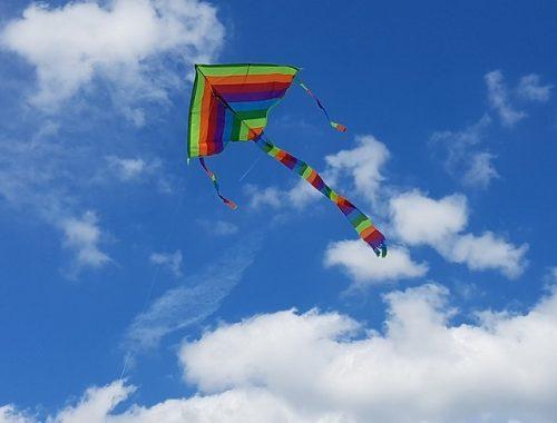 В ЕАО открылась «горячая линия» по организации летнего отдыха детей