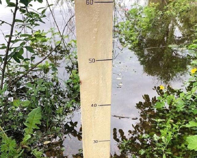 Огороды начали уходить под воду в Биробиджане