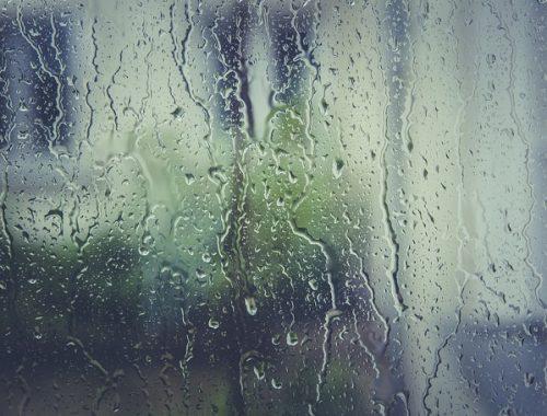 Сильные ливни ожидаются завтра в ЕАО