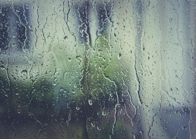 Передышка была недолгой: сильные дожди опять надвигаются на ЕАО