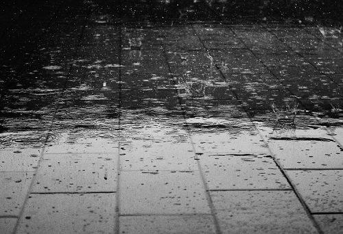 22 июля погода резко ухудшится в ЕАО
